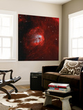 The Tadpole Nebula Wall Mural by  Stocktrek Images