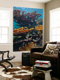 Tropical Fish Take Refuge Amongst Elkhorn Coral Wall Mural by  Stocktrek Images