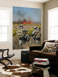 Soldiers Call in Information During Exercise Atlantic Strike in Florida Wall Mural by  Stocktrek Images