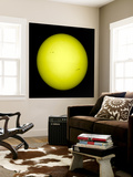 Full View of the Sun Wall Mural by  Stocktrek Images