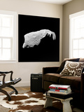 Asteroid 243 Ida Wall Mural by  Stocktrek Images