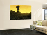 The Surface of an Infernal Planet, Venus Wall Mural by  Stocktrek Images