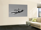 A P-38 Lightning and P-51D Mustang in Flight Wall Mural by  Stocktrek Images