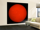 H-Alpha Full Sun in Red Color with Active Areas and Filaments Wall Mural – Large by  Stocktrek Images