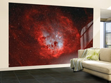 The Tadpole Nebula Wall Mural – Large by  Stocktrek Images