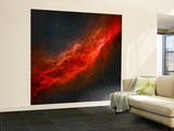 The California Nebula Wall Mural – Large by  Stocktrek Images