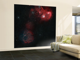 Widefield View of Of Simeis 147, the Flaming Star Nebula, and the Tadpole Nebula Wall Mural – Large by  Stocktrek Images
