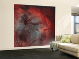 IC 1396, the Elephant Trunk Nebula Wall Mural – Large by  Stocktrek Images
