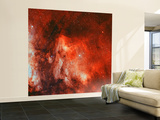 The Pelican Nebula Wall Mural – Large by  Stocktrek Images