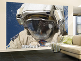 A Russian Cosmonaut Wearing a Russian Orlan Spacesuit During a Spacewalk Wall Mural – Large by  Stocktrek Images
