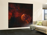 The Jellyfish Nebula Wall Mural – Large by  Stocktrek Images