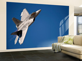 An F-22 Raptor Aircraft Performs During Aviation Nation 2010 Wall Mural – Large by  Stocktrek Images