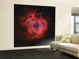 The Rosette Nebula Wall Mural – Large by  Stocktrek Images