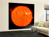 Solar Activity on the Sun Wall Mural – Large by  Stocktrek Images