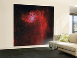 The Flaming Star Nebula Wall Mural – Large by  Stocktrek Images