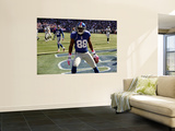 Raiders Giants Football: East Rutherford, NJ - Hakeem Nicks Wall Mural by Bill Kostroun