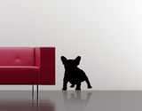 French Bulldog-Black Wall Decal