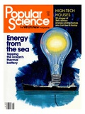 Front cover of Popular Science Magazine: May 1, 1981 Art