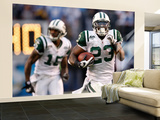 Jets Chargers Football: San Diego, CA - Shonn Greene Wall Mural – Large by Lenny Ignelzi