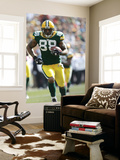 Lions Packers Football: Green Bay, WI - Jermichael Finley Wall Mural by Mike Roemer