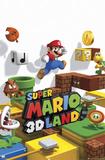 Super Mario 3D Land Prints