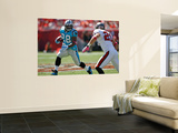 Panthers Buccaneers Football: Tampa, FL - Jonathan Stewart Wall Mural