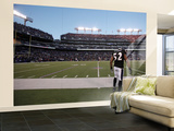 Bears Ravens Football: Baltimore, MD - Ray Lewis Wall Mural – Large by  Rob Carr