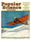 Front Cover of Popular Science Magazine: January 1, 1920 - Reprodüksiyon
