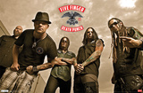 Five Finger Death Punch Posters