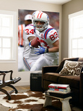 Patriots Broncos Football: Denver, CO - Wes Welker Wall Mural by Jack Dempsey
