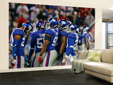 Cardinals Giants Football: East Rutherford, NJ - Giants Defense Wall Mural – Large by Tim Larsen