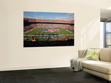 Saints Dolphins Football: Miami, FL - Sun Life Stadium Wall Mural by Jeffrey M. Boan