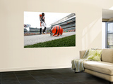 Steelers Bengals Football: Cincinnati, OH - Cedric Benson Wall Mural by Ed Reinke