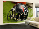 Texans Cardinals Football: Glendale, AZ - Houston Texans Helmet Wall Mural – Large by Ross D. Franklin