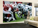 Panthers Cardinals Football: Glendale, AZ - Cardinals v Panthers Wall Mural – Large by Paul Connors