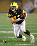 Troy Polamalu 2011 Action Photo