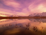 Brooks Range Reflecting in Pond, Alaska Photographic Print by John Eastcott & Yva Momatiuk