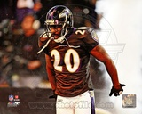 Ed Reed 2011 Action Photo