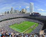 Bank of America Stadium 2011 Photo