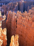 USA, Utah, Bryce Canyon Photographic Print by Hans Peter Merten
