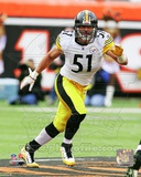 James Farrior 2011 Action Photo