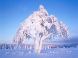 Snow scene in winter Photographic Print by Herbert Kehrer