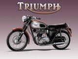 Triumph Bike Plaque en métal