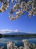 Japan: Mount Fuji and Lake Kawaguchi Fotografie-Druck von José Fuste Raga