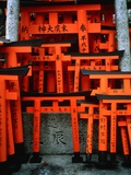 Torii Gates at Fushimi Inari Shrine, Japan, Kyoto Photographic Print by Murat Taner