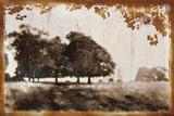 Tree Meadow II Print by Lucy Meadows