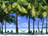 Aitutaki, Cook Islands, New Zealand 写真プリント : ピーター・アダムス