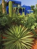 Majorelle Gardens in Marrakech Fotografisk tryk af Jean-pierre Lescourret