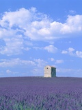 Blooming lavender and stone house in France Photographic Print by Herbert Kehrer