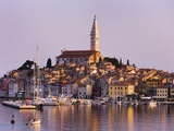 Old Town of Rovinj Photographic Print by Danny Lehman